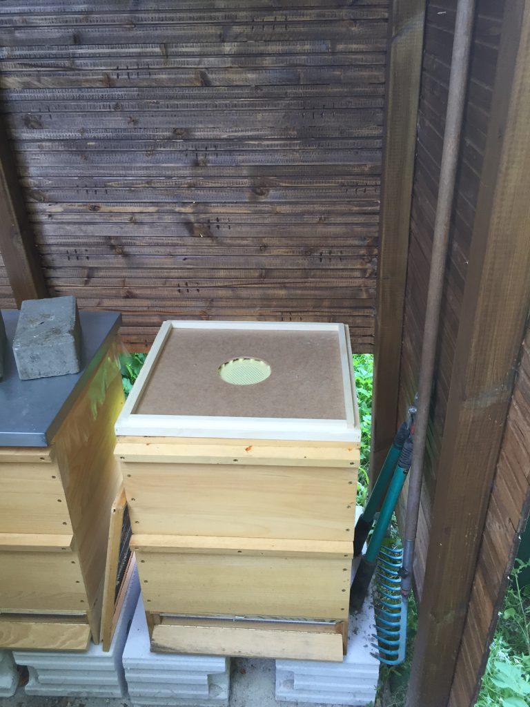 Bienenflucht eingesetzt